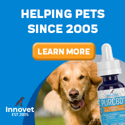 Innovet - Helping Pets since 2005